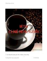 Bài thảo luận: Chiến lược Marketing của Cà phê Trung Nguyên doc