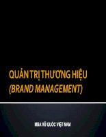 Bài Giảng Quản Trị Thương Hiệu ( Brand management ) - MBA VŨ QUỐC VIỆT NAM docx