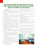 Xác định dư lượng hóa chất bảo vệ thực vật bằng thiết bị sắc ký khí khối phổ (GC-MS 6890) trong chè trồng tại Thái Nguyên pot
