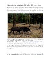 Các món ăn và cách chế biến thịt lợn rừng pptx