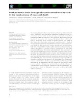 Báo cáo khoa học: Post-ischemic brain damage: the endocannabinoid system in the mechanisms of neuronal death ppt