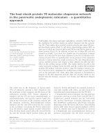 Báo cáo khoa học: The heat shock protein 70 molecular chaperone network in the pancreatic endoplasmic reticulum ) a quantitative approach potx