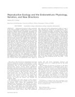 Reproductive Ecology and the Endometrium: Physiology, Variation, and New Directions docx