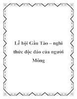 Lễ hội Gầu Tào – nghi thức độc đáo của người Mông pdf