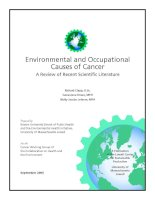 Environmental and Occupational Causes of Cancer: A Review of Recent Scientifi c Literature ppt