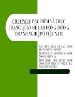 CHƯƠNG 8: ĐẶC ĐIỂM VÀ THỰC TRẠNG QUAN HỆ LAO ĐỘNG TRONG DOANH NGHIỆP Ở VIỆT NAM. pot