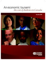 An economic tsunami the cost of diabetes in Canada pptx