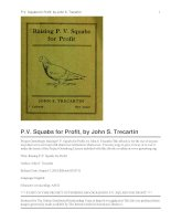 Raising P.V. Squabs for Profit pot