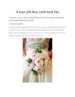 4 mẹo giữ hoa cưới tươi lâu ppt