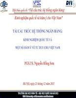 Tái cấu trúc hệ thống ngân hàng: Kinh nghiệm quốc tế và hàm ý cho Việt Nam pdf