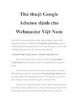 Thủ thuật Google Adsense dành cho Webmaster Việt Nam pot