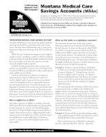 Montana Medical Care Savings Accounts (MSAs) docx
