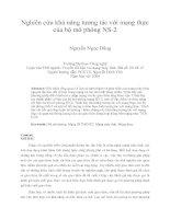 Nghiên cứu khả năng tương tác với mạng thực của bộ mô phỏng NS-2
