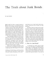 THE TRUTH ABOUT JUNK BONDS doc