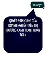 QUYẾT ĐỊNH CUNG CỦA DOANH NGHIỆP TRÊN THỊ TRƯỜNG CẠNH TRANH HÒAN TÒAN docx