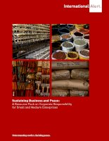 Sustaining Business and Peace: A Resource Pack on Corporate Responsibility for Small and Medium Enterprises docx