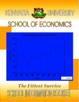 KENYATTA UNIVERSITY SCHOOL OF ECONOMICS potx