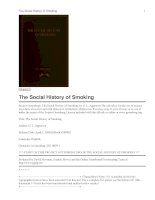 The Social History of Smoking potx