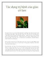 Tác dụng trị bệnh của giảo cổ lamCây giảo cổ lam còn có tên là pdf