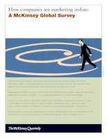 HOW COMPANIES ARE MARKETING ONLINE: A MCKINSEY GLOBAL SURVEY ppt