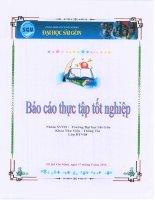 báo cáo thực tập  tốt ngiệp thư viện trường đại học sư phạm kỹ thuật thành phố hồ chí minh (2)