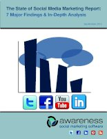 The State of Social Media Marketing Report: 7 Major Findings & In-Depth Analysis doc