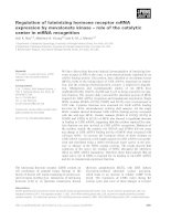 Báo cáo khoa học: Regulation of luteinizing hormone receptor mRNA expression by mevalonate kinase – role of the catalytic center in mRNA recognition potx