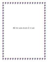 Đề thi môn kinh tế vĩ mô pdf