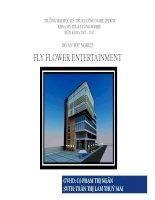Luận văn: Fly Flowers entertaiment pdf