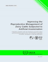 Improving the Reproductive Management of Dairy Cattle Subjected to Artificial Insemination potx