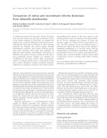 Báo cáo khóa học: Comparison of native and recombinant chlorite dismutase from Ideonella dechloratans pot