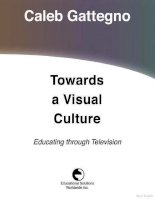 towards a visual culture potx