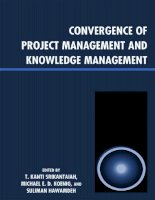 Convergence of Project Management and Knowledge Management pot