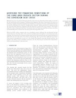 ASSESSING THE FINANCING CONDITIONS OF THE EURO AREA PRIVATE SECTOR DURING THE SOVEREIGN DEBT CRISIS docx