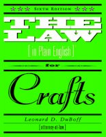 The Law (In Plan) for Crafts potx