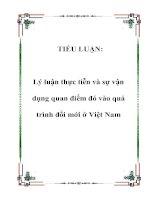 TIỂU LUẬN: Lý luận thực tiễn và sự vận dụng quan điểm đó vào quá trình đổi mới ở Việt Nam docx