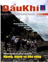 Tạp chí của tập đoàn dầu khí quốc gia Việt Nam - Petrovietnam - Số 12 - 2011 pot