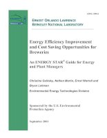 Energy Efficiency Improvement and Cost Saving Opportunities for Breweries docx