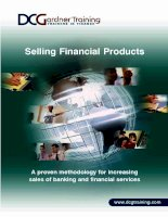 Selling Financial Products - A proven methodology for increasing sales of banking and financial services doc
