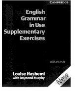 cambridge - english grammar in use (intermediate) supplementary exercises (3rd ed) (2004)