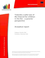 Towards a safer use of the Internet for children in the EU – a parents' perspective ppt