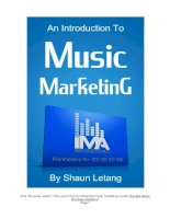An introduction to music marketing by shaun letang