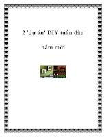 2 ''''dự án'''' DIY tuần đầu năm mới pdf