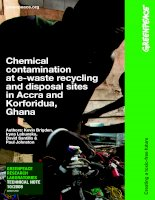 Chemical contamination at e-waste recycling and disposal sites in Accra and Korforidua, Ghana pptx