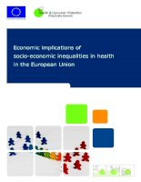 Economic implications of socio-economic inequalities in health in the European Union docx