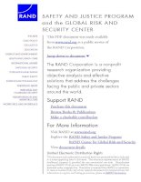 SAFETY AND JUSTICE PROGRAM and the GLOBAL RISK AND SECURITY CENTER docx