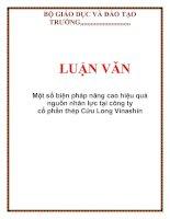 LUẬN VĂN: Một số biện pháp nâng cao hiệu quả nguồn nhân lực tại công ty cổ phần thép Cửu Long Vinashin docx