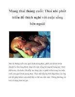 Mang thai tháng cuối: Thai nhi phát triển để thích nghi với cuộc sống bên ngoài pptx