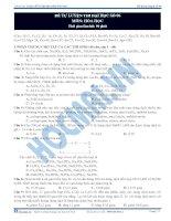 đề thi thử môn hóa của thầy phạm ngọc sơn đề  6