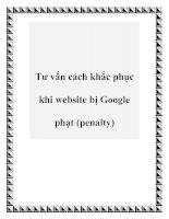 Tư vấn cách khắc phục khi website bị Google phạt (penalty) pdf
